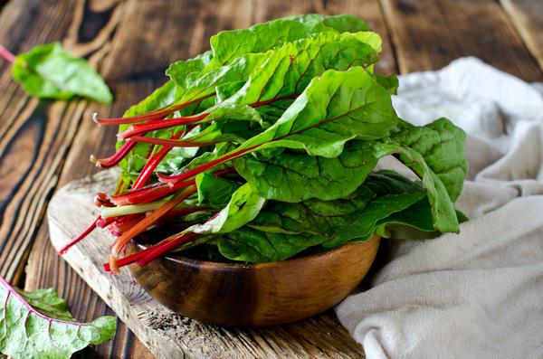 Как сажать шпинат в открытый грунт