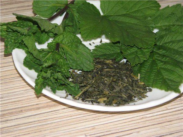 Сушка черной смородины на зиму. Когда собирать и как сушить листья черной смородины для чая?