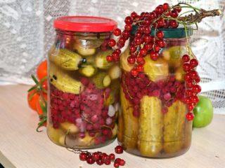 Огурцы с красной смородиной на зиму: рецепты с уксусом и без