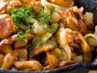 Сыроежки жареные: рецепты приготовления, как заготовить на зиму