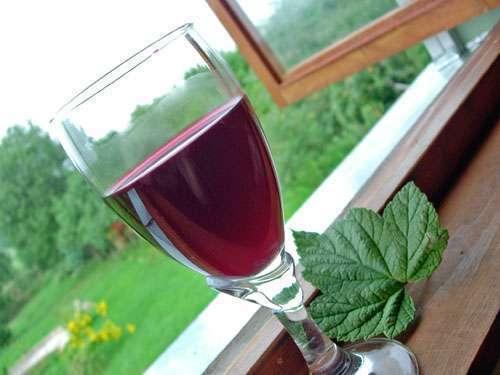 Вино из листьев смородины в домашних условиях рецепт приготовления