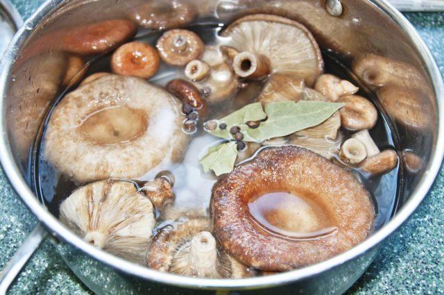 Волнушки, маринованные на зиму рецепты приготовления в домашних условиях, в банках, видео