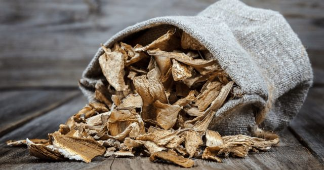 Как сушить грибы зонтики в духовке