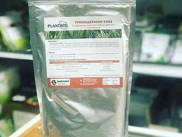 Как применять Триходермин для комнатных растений?