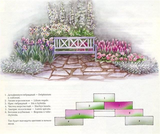 Клумбы с лилиями и схемы