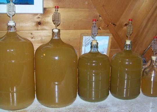 Яблочное вино в домашних условиях рецепт из сока