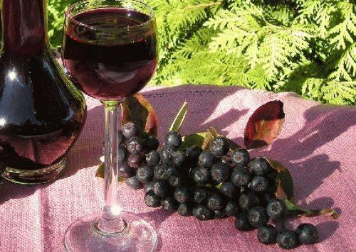 Вино из черноплодки в домашних условиях простой рецепт