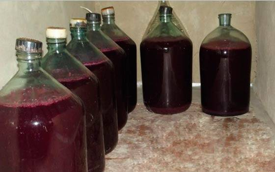 Домашнее вино из жмыха