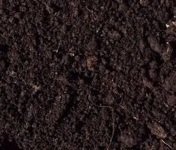 Земля для рассады огурцов