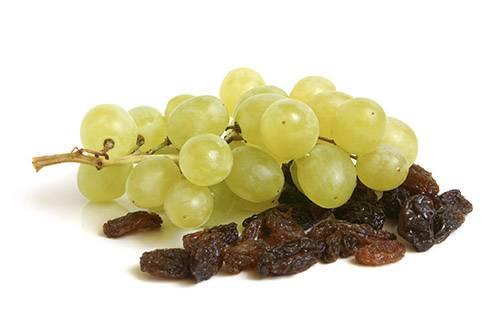 Вино из сливового варенья в домашних условиях