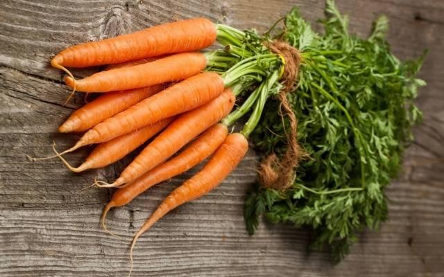 Морковь в гранулах посадка и уход в открытом грунте