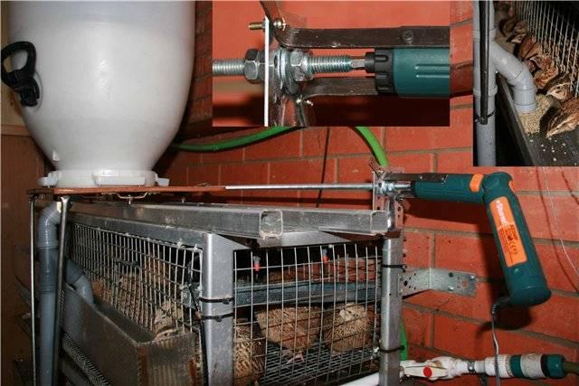 Автоматическая подача корма для кур своими руками