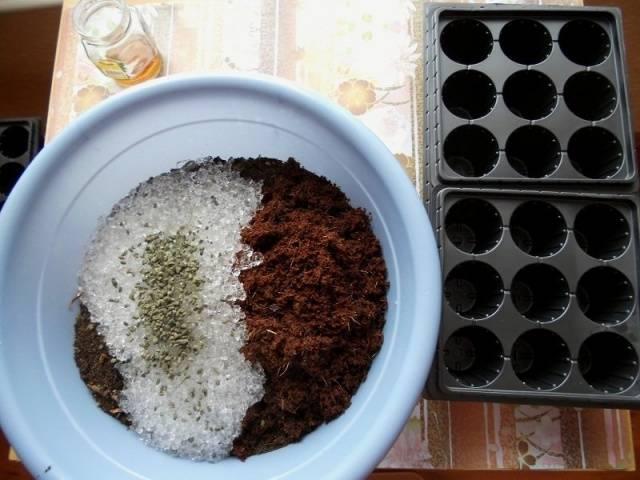 Почва для петунии в домашних условиях
