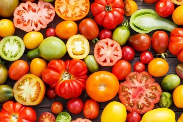 Голландские сорта томатов описание, фото, отзывы