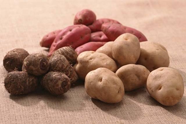Когда посадить картошку в мае 2018